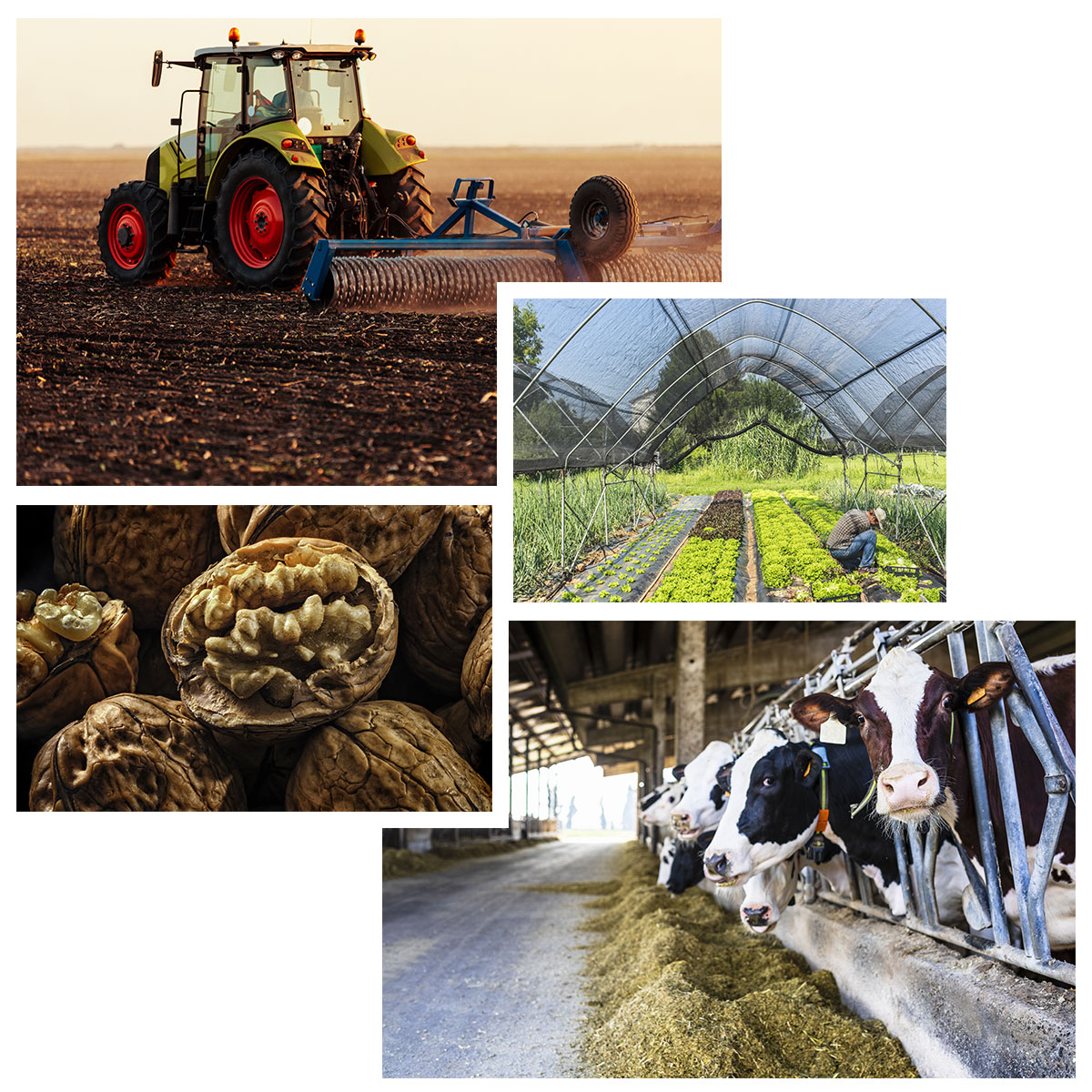 Agriculture en Périgord